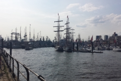 Hamburg13-5-18-78